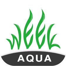 WEEK Aqua